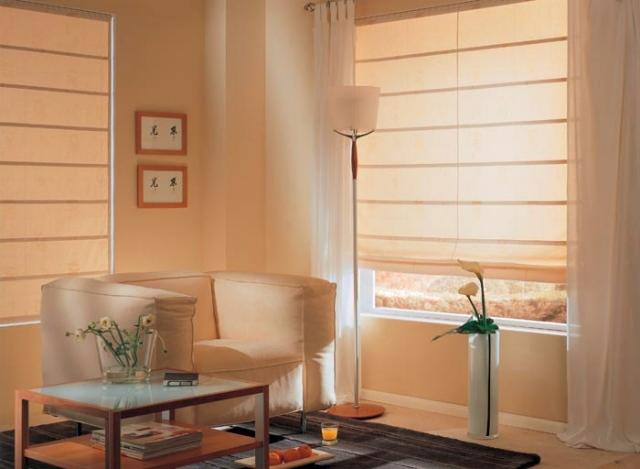 Прозрачные римские шторы с тюлем в гостиной