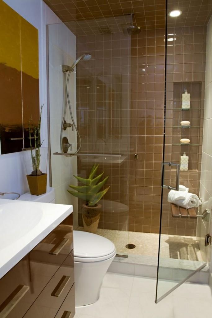 идея оформления маленькой ванной комнаты коричневая плитка для ванной стеклянные двери душевой