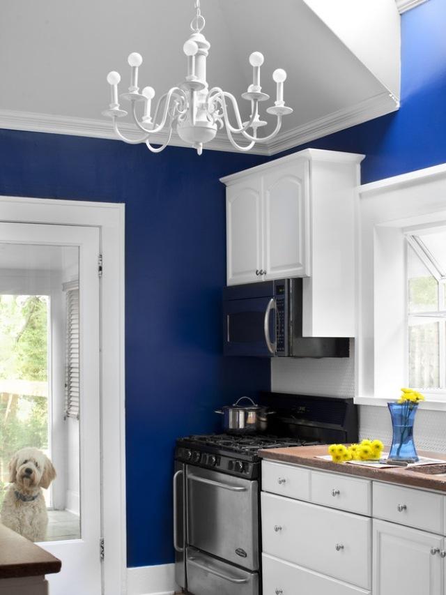 бело-синяя кухня фото