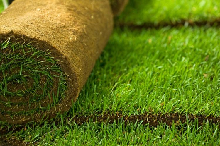 Как укладывать рулонный газон своими руками фото 887