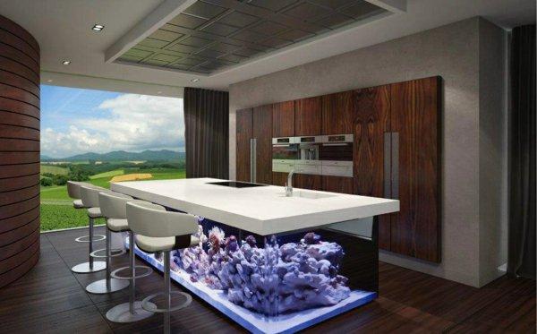 Красивые аквариумы вместо унылых кухонных столов. Красивые ...