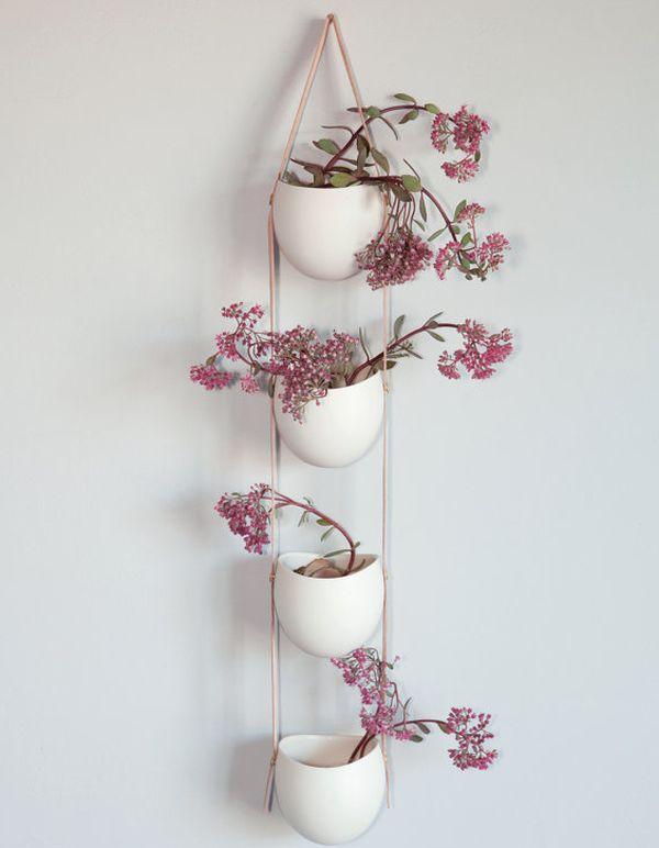 Растения в подвесном кашпо
