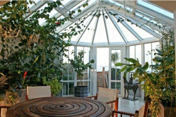 Фото: Зимний сад в частном доме с растениями-лианами