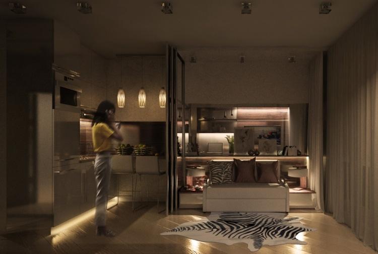 17 фото дизайна маленькой однокомнатной квартиры 20 кв м освещение кухня ковер зебра