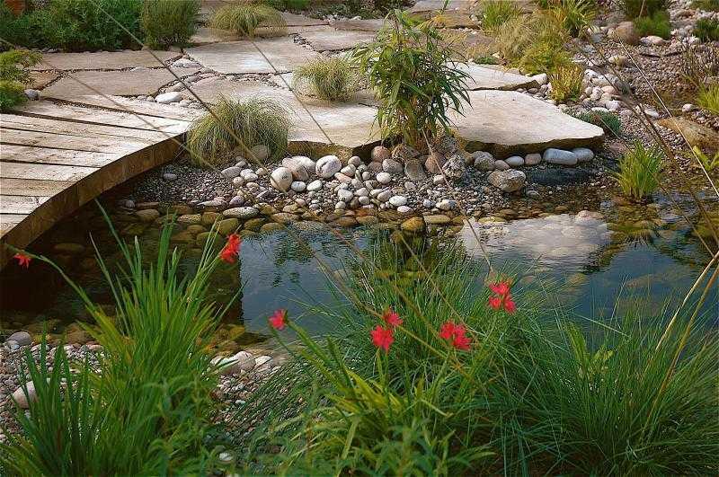 декоративный садовый пруд фото