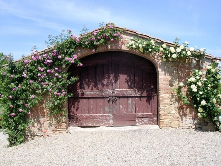 Романтичный вид старых ворот