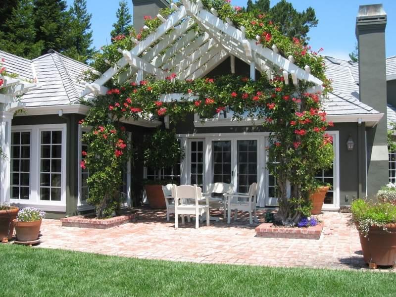 Терраса перед входом в дом, украшенная плетистыми розами