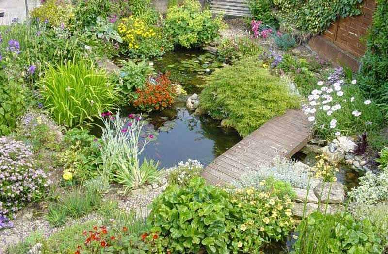 садовый пруд своими руками деревянный мост фото