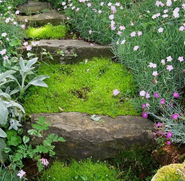 идея садовой лестницы своими руками камень мох