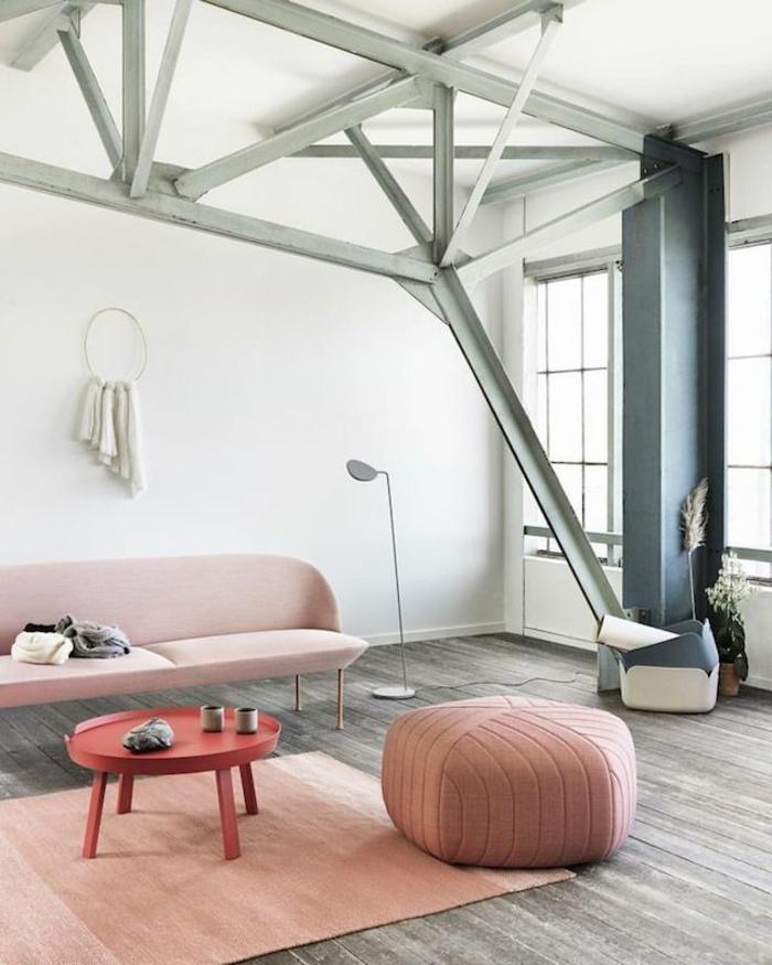 розовый цвет в интерьере фото сочетание с серым белым гостиная