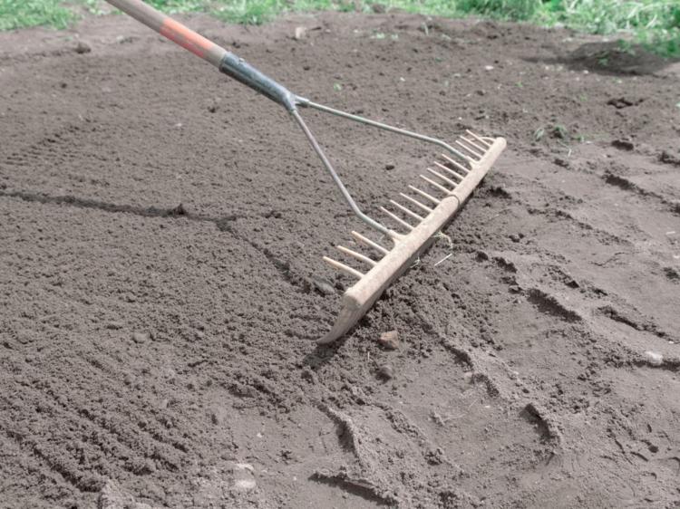 подготовка под рулонный газон фото