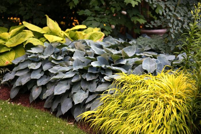 Украшения своими руками для огорода и сада своими руками фото фото 657